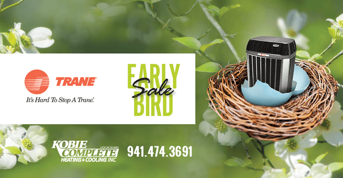 Trane Early Bird Sale March 2016