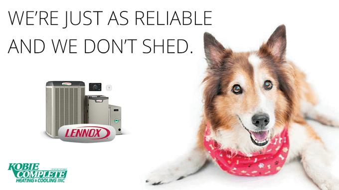 Lennox Rebate Ad - Dependable Dog