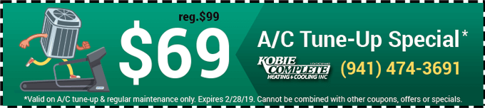 $69 AC Tune Up Special