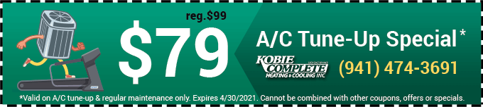 $79 AC Tune Up Special